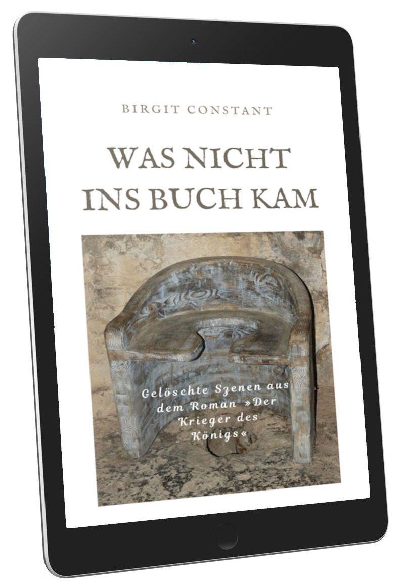 3D-Buchcover von Birgit Constant: Der Krieger des Königs – Was nicht ins Buch kam